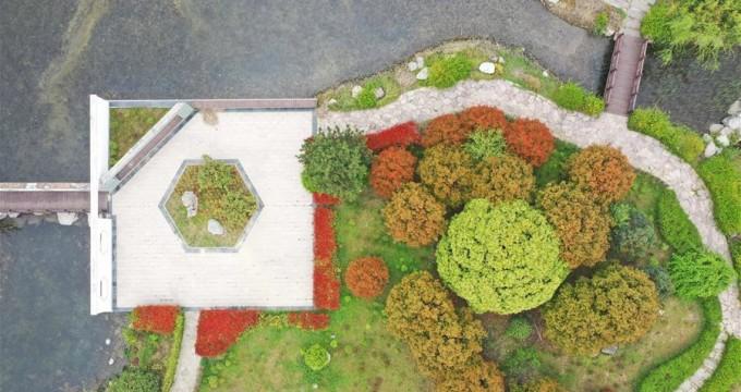河南鄢陵:花木博览园里春色美
