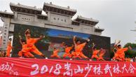 2018嵩山少林武林大会开幕